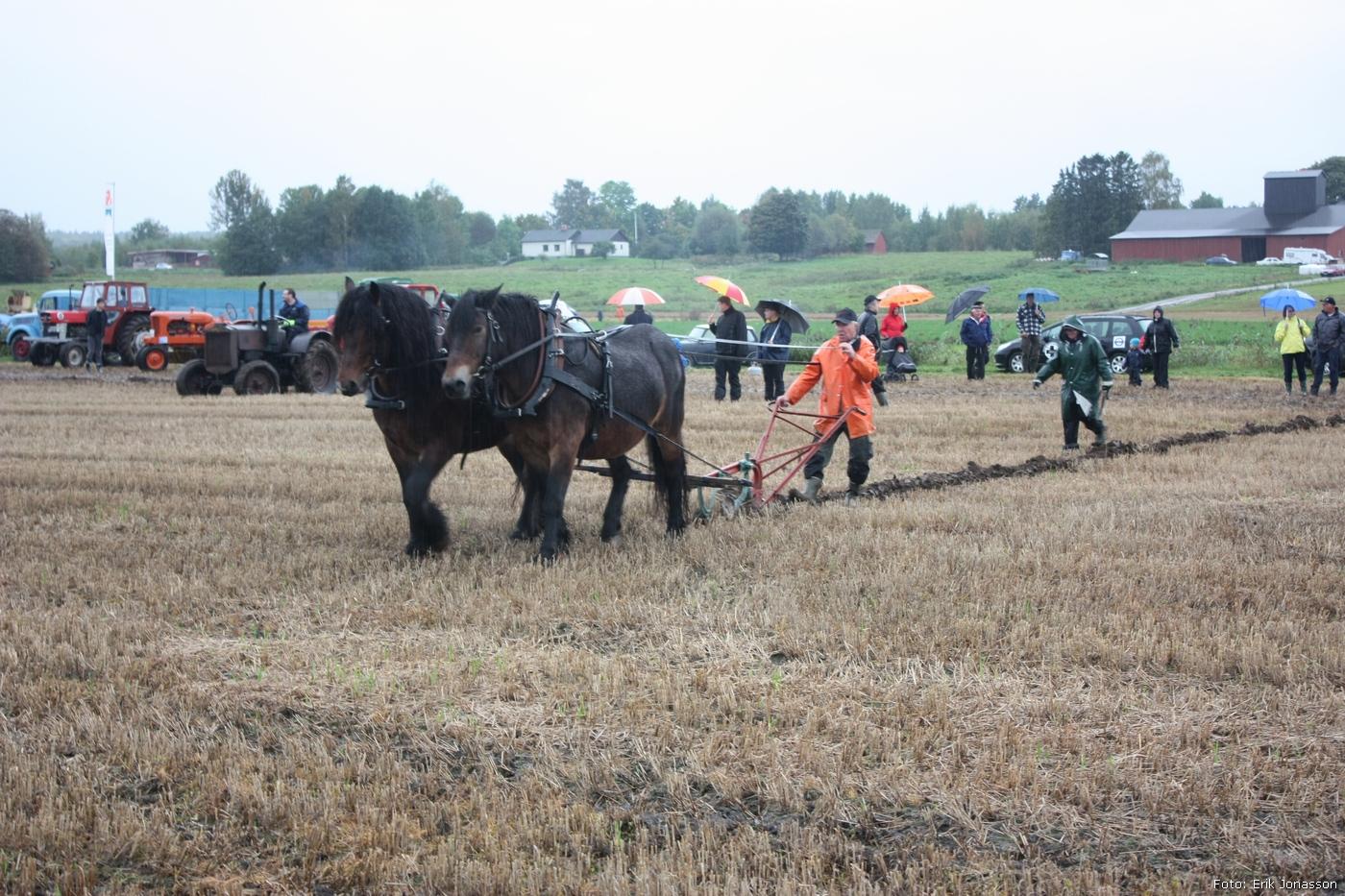 2010-09-18_013_Valsta