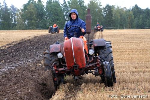 2010-09-18_045_Valsta