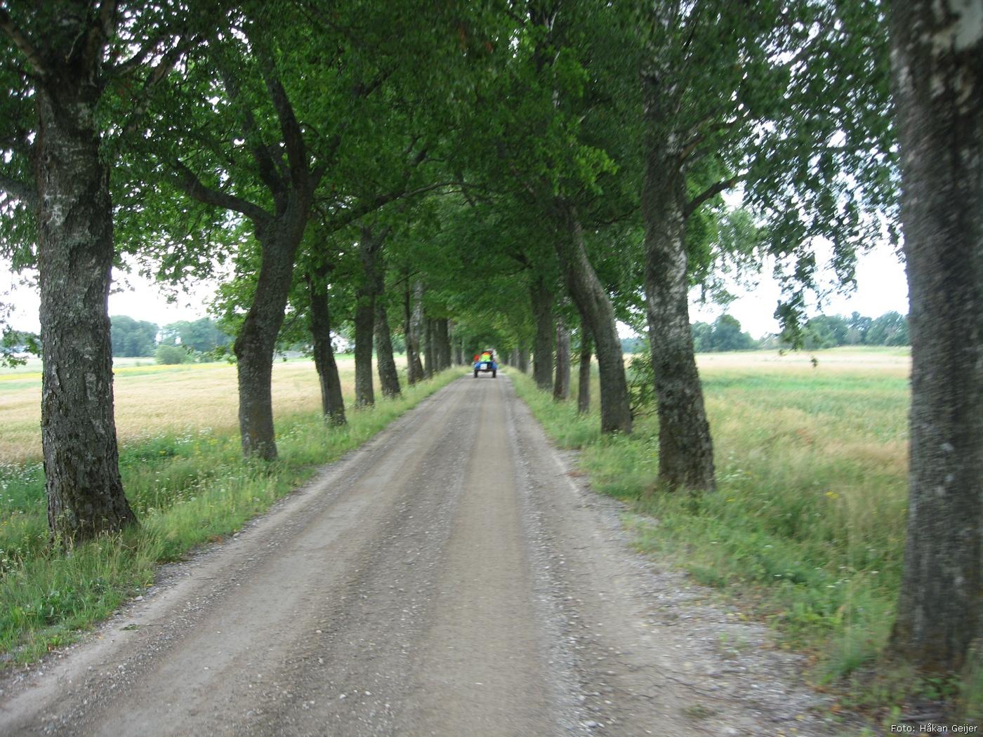 2011-07-29_35_Traktorresa