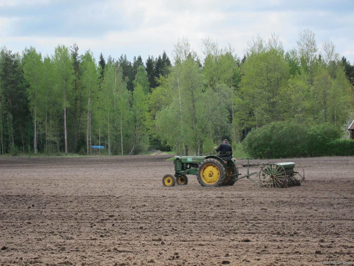 2012-05-17_23_Varsadd