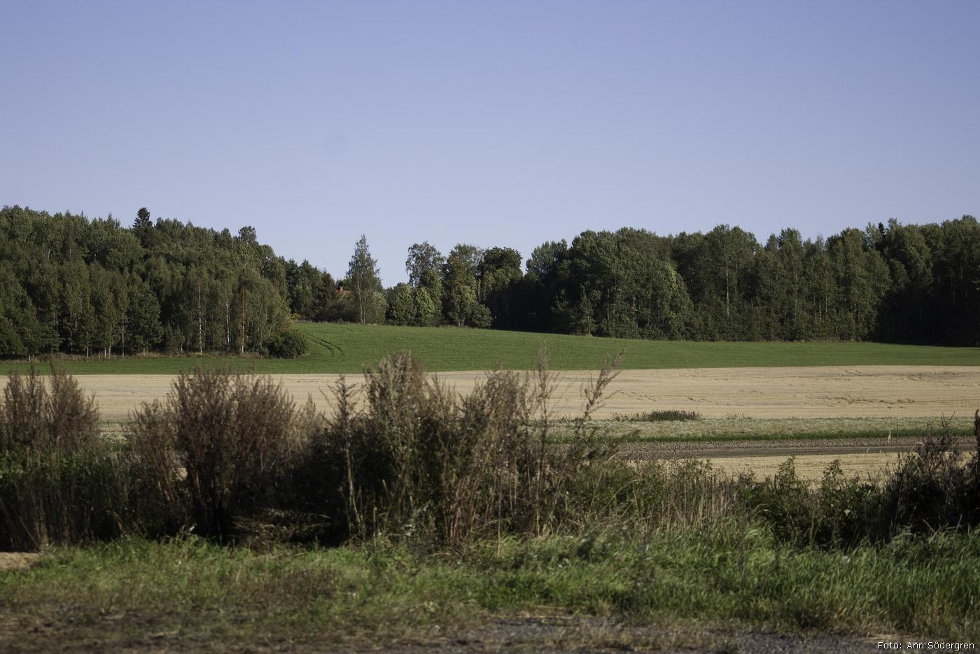 2012-09-15_68_Valsta