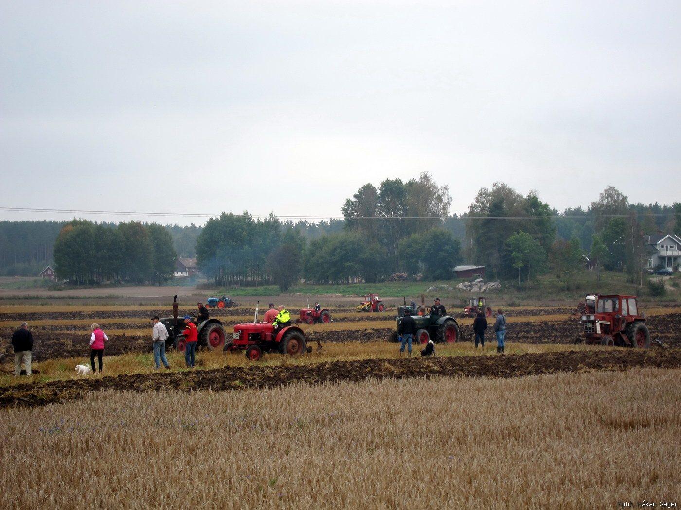 2014-09-20_32_plojning