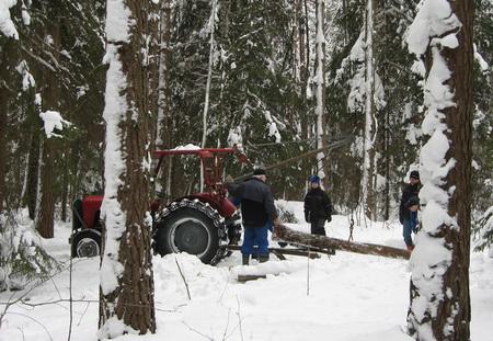 2010-02-13_44_Skogsdag